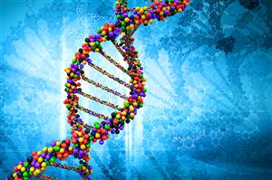 FDA vừa thông qua một loại thuốc nhắm vào các căn bệnh ung thư dựa trên DNA, không nhất thiết phải xác định vị trí khối u trong cơ thể bạn.